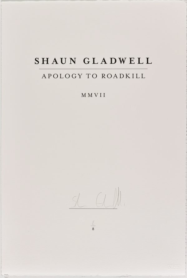 An image of Apology to roadkill MMVII