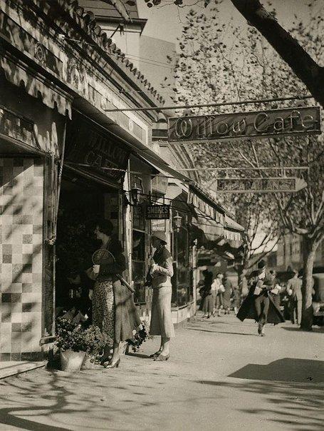 An image of Darlinghurst Rd by Harold Cazneaux