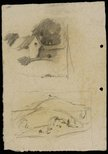 Alternate image of recto: House behind a fence [top] and Rounded hillside landscape [bottom] verso: House [top] and The hillside [bottom] by Lloyd Rees