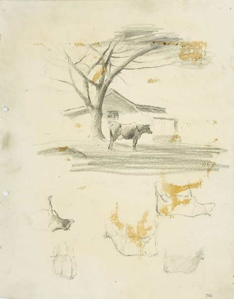 An image of recto: Farmhouse with cow under a tree, Parramatta and Cow studies verso: Cow studies by Lloyd Rees