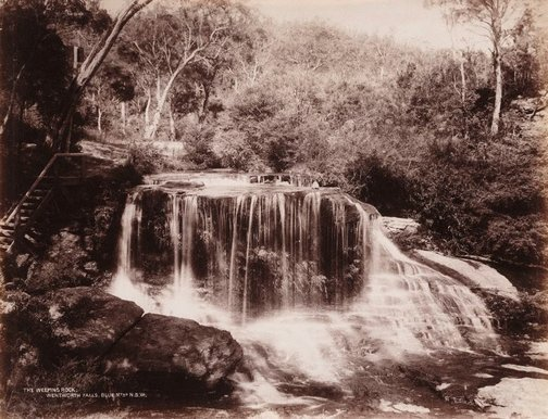 An image of The Weeping Rock, Wentworth Falls Blue Mtns. N.S.W. by Unknown, NSW Government Printer