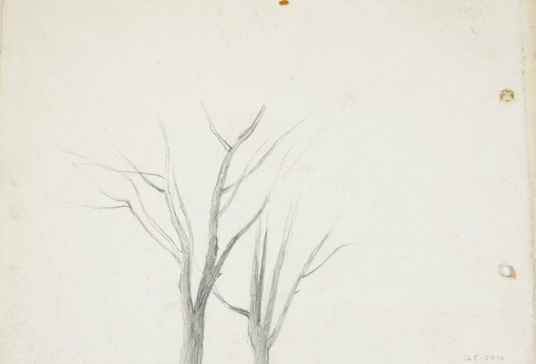 Alternate image of recto: Landscape verso: Bare trees by Lloyd Rees