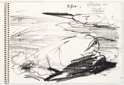 An image of Sketchbook no .19: Australia (Tasmania) 1980s by Lloyd Rees