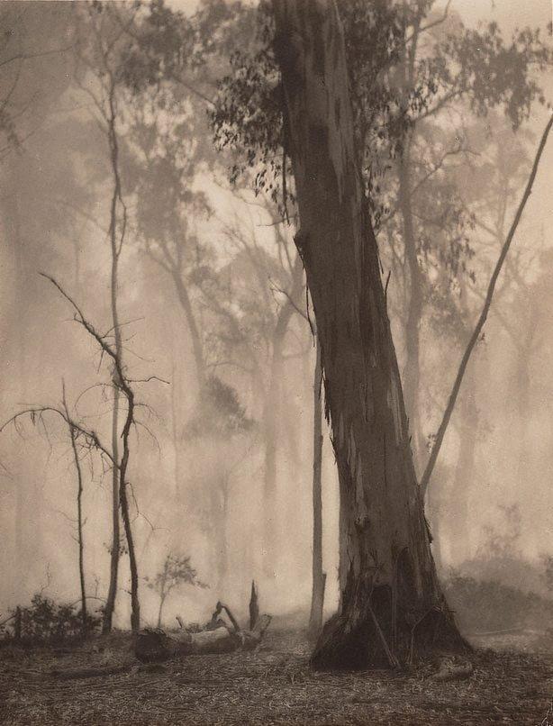 An image of Bush fire haze, Mount Talbingo, New South Wales