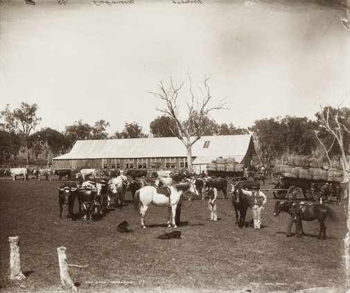 An image of Woolshed, Memagong Station by Unknown, Kerry & Co