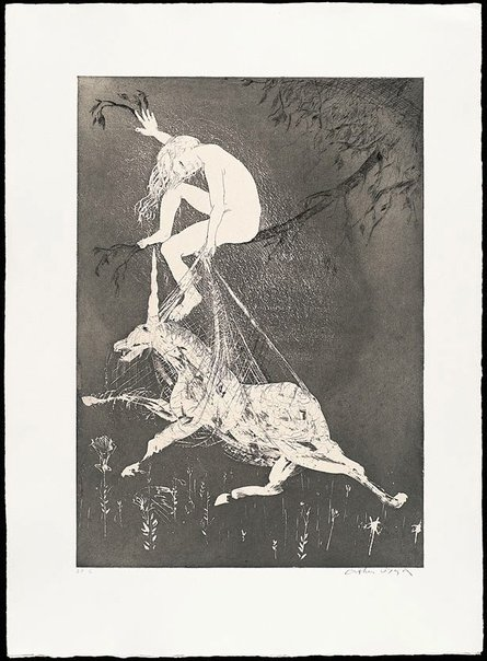 An image of The lady betrays the unicorn I by Arthur Boyd