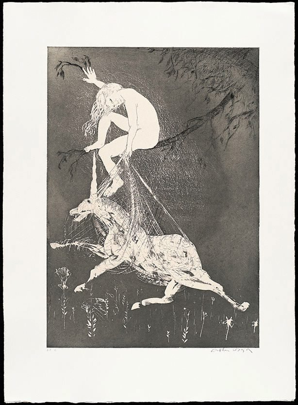 The lady betrays the unicorn I, (1973-1974), The Lady and the Unicorn by Arthur Boyd