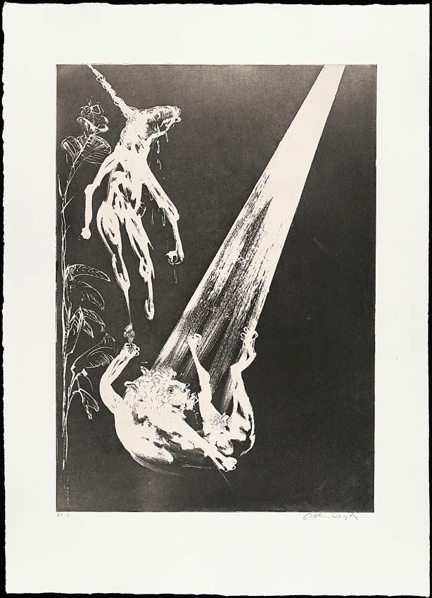 The unicorn and the angel, (1973-1974), The Lady and the Unicorn by Arthur Boyd