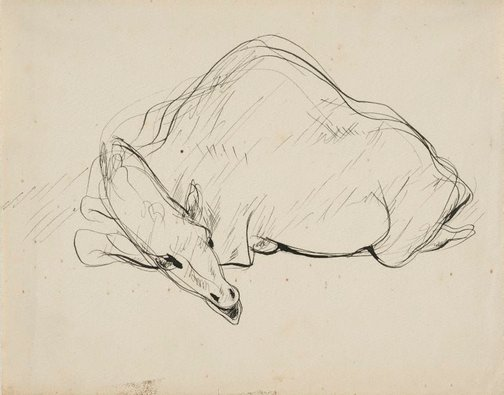 An image of Seated camel by Francis Lymburner