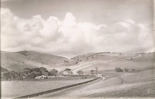An image of Road up the hill by Harold Cazneaux