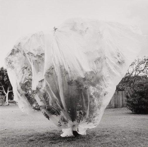An image of Balmain, Sydney 1 by Ingeborg Tyssen