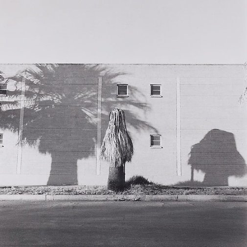 An image of Tuscon, Arizona by Ingeborg Tyssen