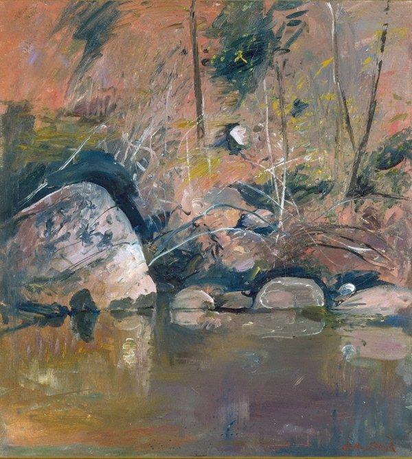 An image of Reflecting rocks