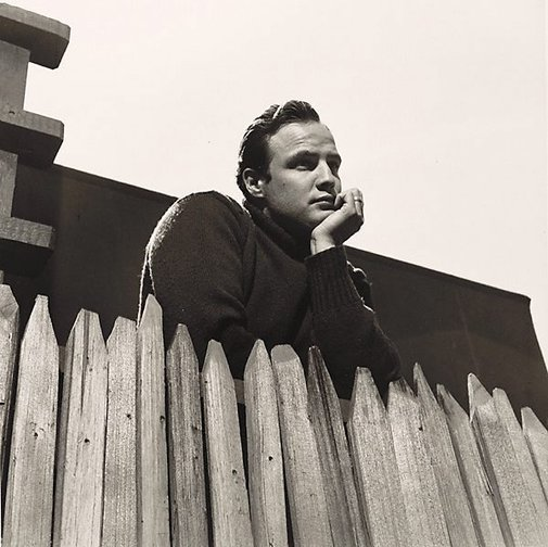 An image of Marlon Brando looks over the fence of his Beverley Glen home by Sid Avery