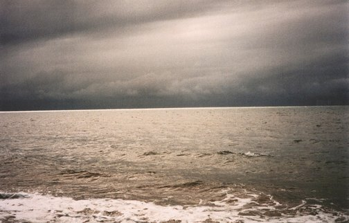 An image of Postcard from Bloomfield Beach by Destiny Deacon