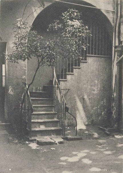 An image of Old stairway, Sydney by FD Collins