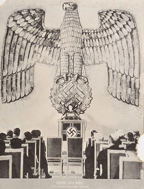 An image of 14. Goering with wings