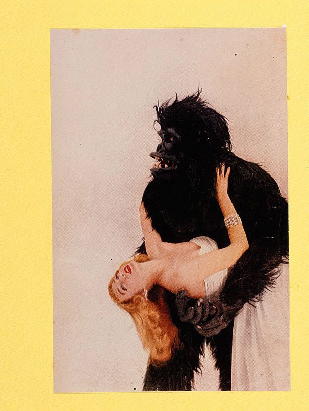 An image of 18. Vogue gorilla with Miss Harper