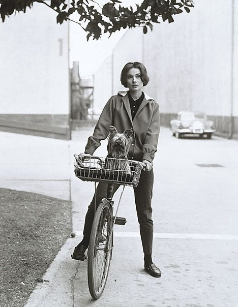 An image of Audrey Hepburn on her bike at Paramount by Sid Avery