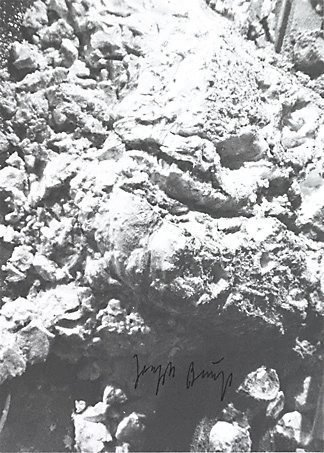An image of Output 36 by Joseph Beuys