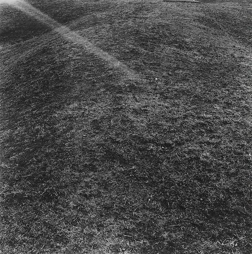 An image of Ground at Ross 9 by Anne Ferran