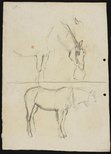 Alternate image of recto: Three horse studies verso: Horse with nosebag and Horse (head unfinished) by Lloyd Rees