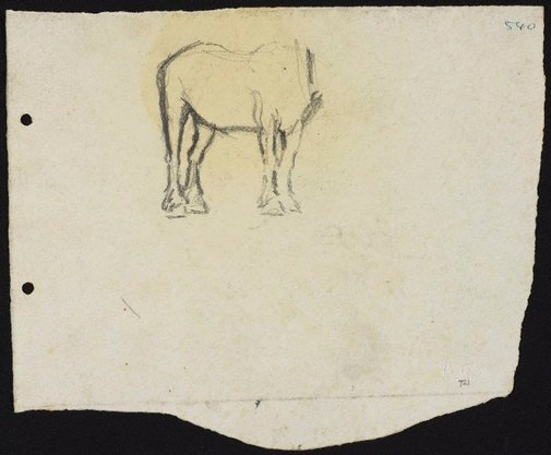 An image of Horse study by Lloyd Rees