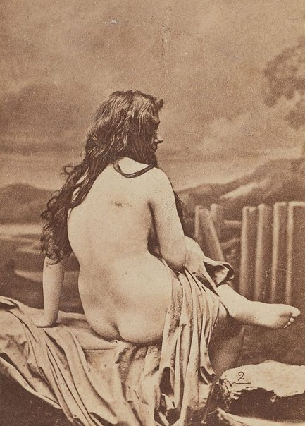 An image of Untitled (nude portrait of a woman, back view) by Unknown photographer
