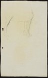 Alternate image of recto: Study of horse's leg verso: Study of horse's legs by Lloyd Rees