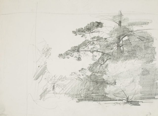 An image of recto: Trees verso: Shrubs and tree on slope