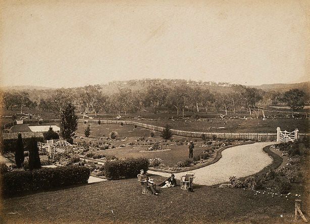 An image of Homestead garden showing perimeter fence and carriageway