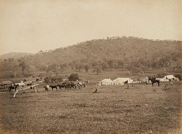 An image of View of property buildings, stockmen and cattle in foreground