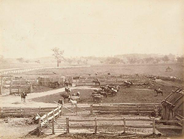 An image of Stockyards