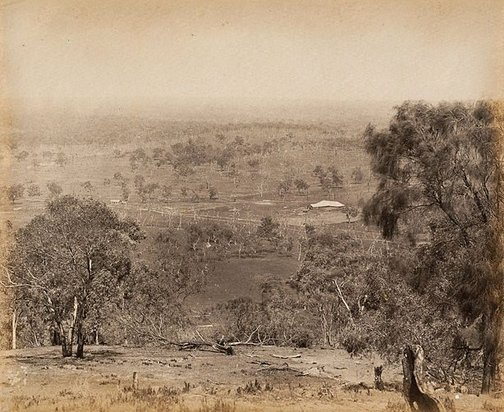 An image of View of shearing shed in the distance by Charles Bayliss