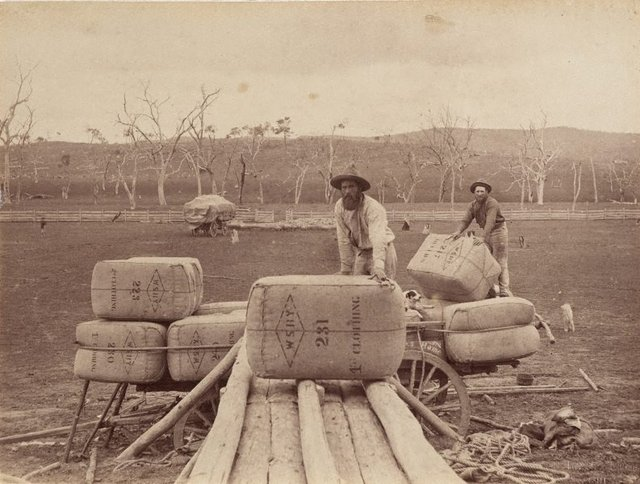 An image of Stacking wool bales onto a cart