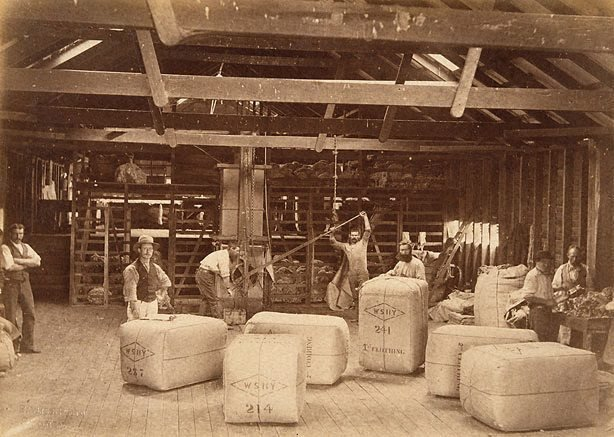 An image of Pressing wool bales