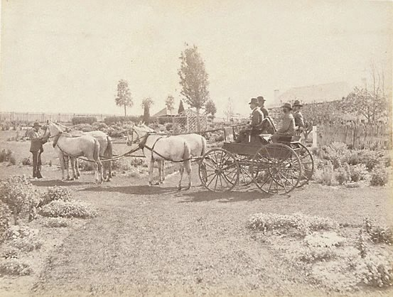 An image of Horse-drawn buggy in front of homestead