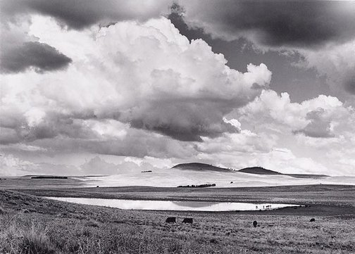 An image of Summer landscape, Monaro country, NSW by David Moore