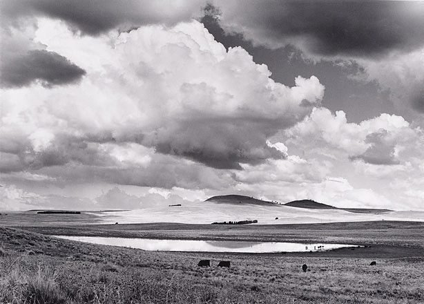 An image of Summer landscape, Monaro country, NSW