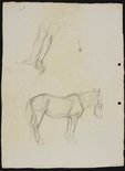 Alternate image of recto: Two work horses verso: Arms pressing down [top] and Work horse with nosebag [bottom] by Lloyd Rees