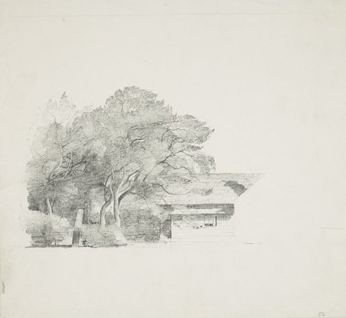 An image of Trees and a house by Lloyd Rees