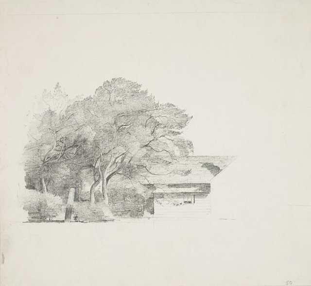 An image of Trees and a house