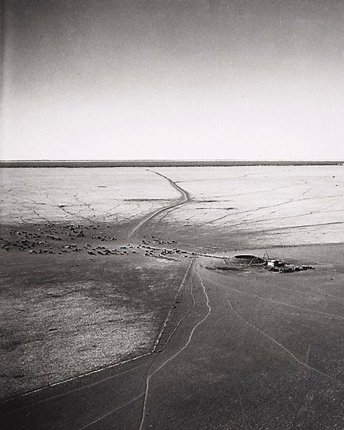 An image of Artesian bore, Gordon Downs, Northern Territory by Axel Poignant