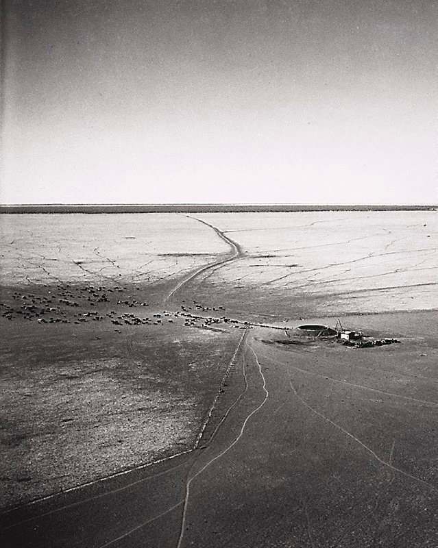 An image of Artesian bore, Gordon Downs, Northern Territory