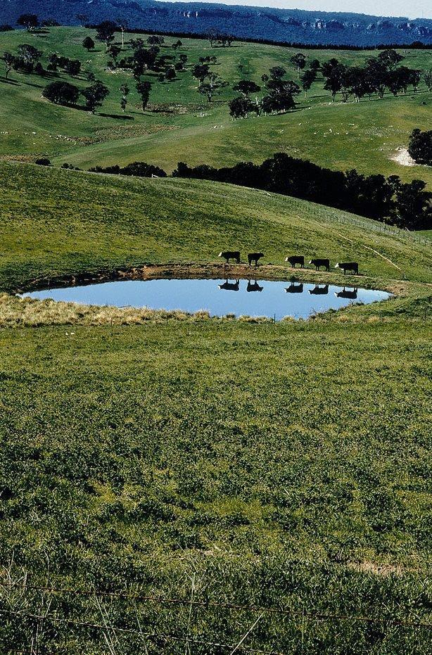 An image of Reservoir