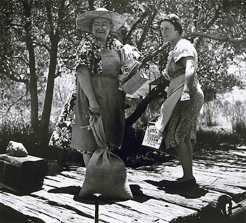 An image of Collecting supplies near Mangrove Creek, Hawkesbury River, New South Wales by Axel Poignant