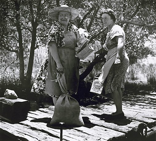 An image of Collecting supplies near Mangrove Creek, Hawkesbury River, New South Wales