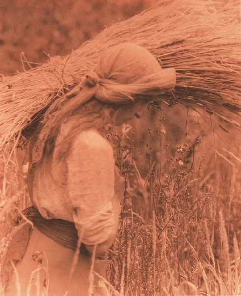 An image of Untitled (girl with wheat sheaf walking to the right) by Frederick A Joyner