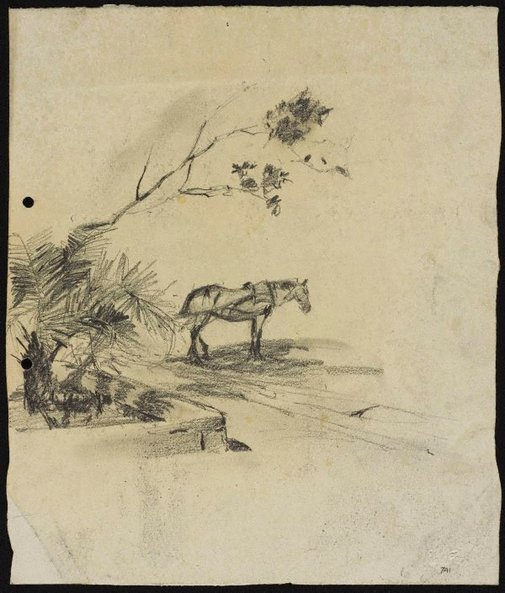 An image of Cab horse beside raised garden by Lloyd Rees