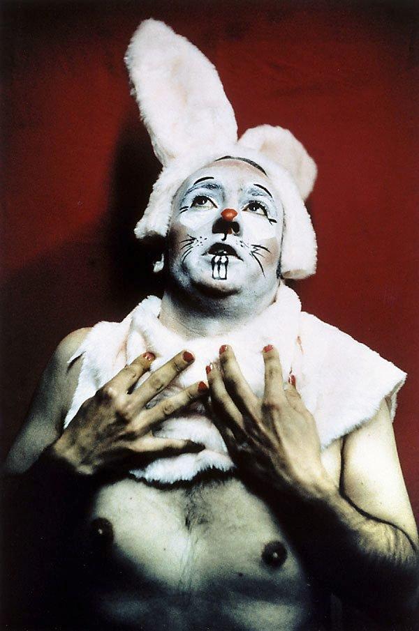 An image of Bunny boy 12